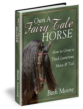 Picture of Own a Fairytale Horse